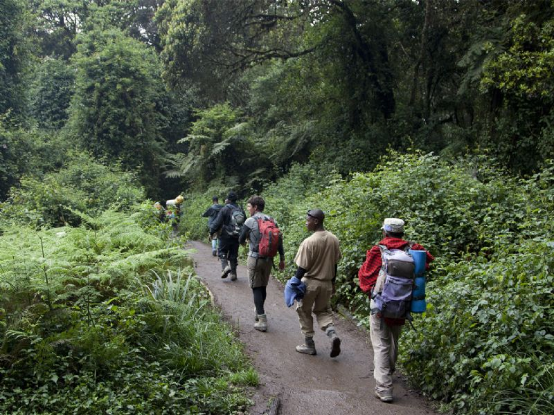 Karibu Adventures - Kilimanjaro day trip