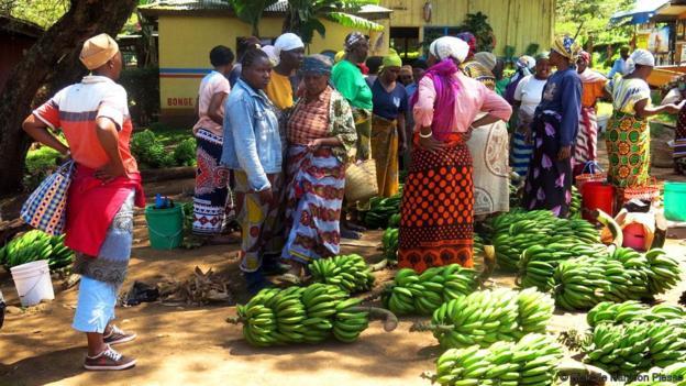 Karibu Adventures - Local Market