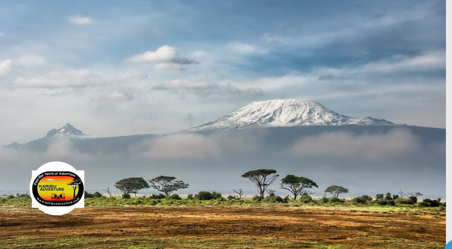 Kilimanjaro Climb Is Not As Technical As You Think