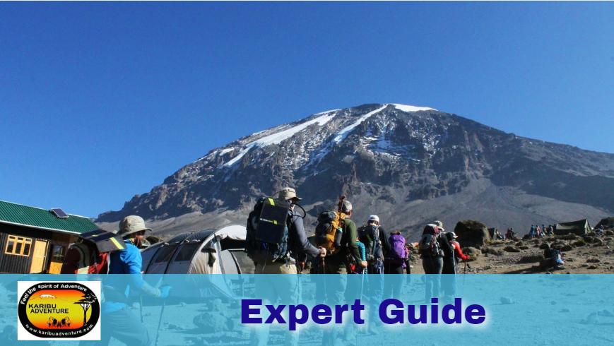 Mount Kilimanjaro Guide
