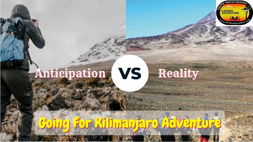 Mount Kilimanjaro Cimbing
